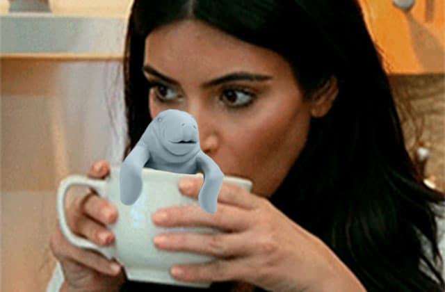L'infuseur à thé lamantin—La #OuicheListe
