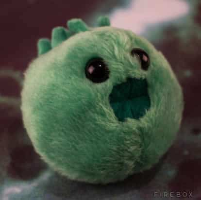 peluches-mst-chlamydia