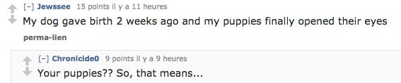 reddit-puppies