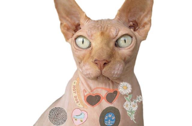 Les tatouages éphémères vintage —La #OuicheListe