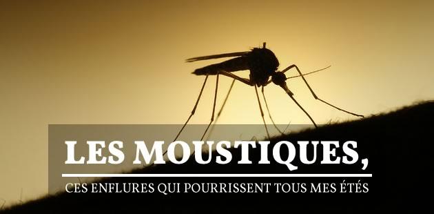 big-moustiques-ete