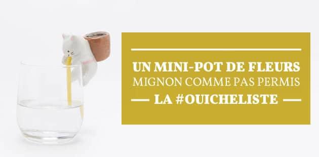 Un mini-pot de fleurs mignon comme pas permis—La #OuicheListe