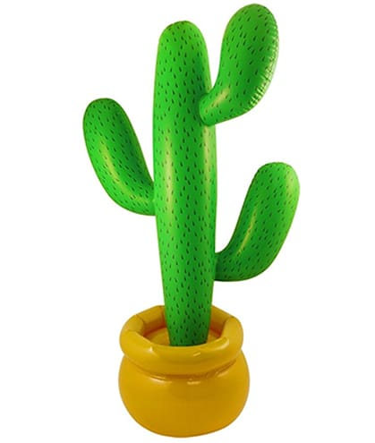 cactus-gonflable-amazon