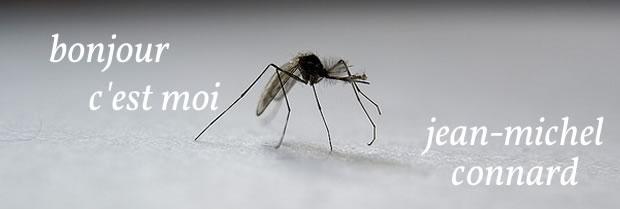 moustique-connard