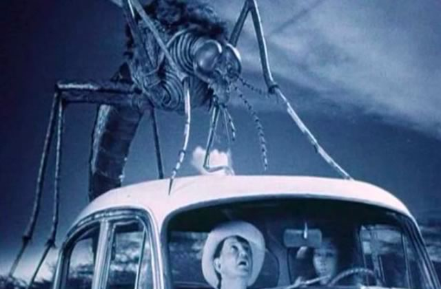 Les moustiques, ces enflures qui pourrissent tous mes étés
