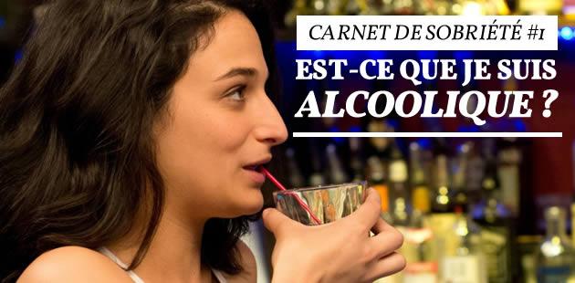 big-alcool-carnets-sobriete-1