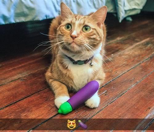 cat-emoji-vibrator