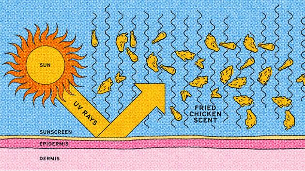 kfc-creme-solaire-dessin
