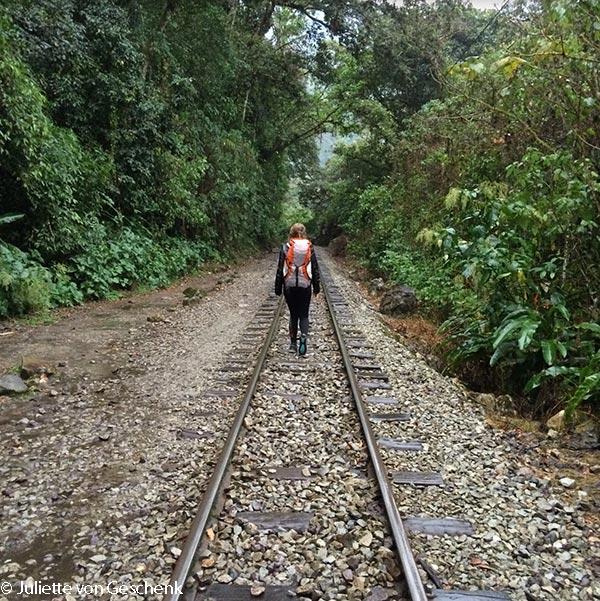cecile-dans-la-selva