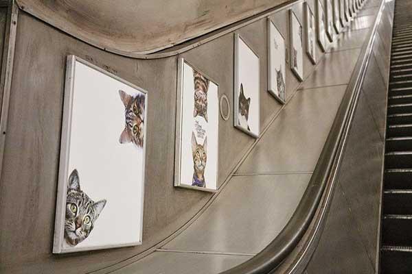 chats-pubs-metro-londonien2