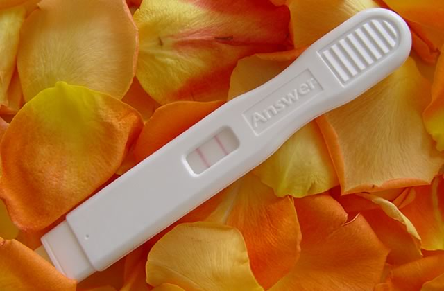 Tomber enceinte dans la France des obscurantistes
