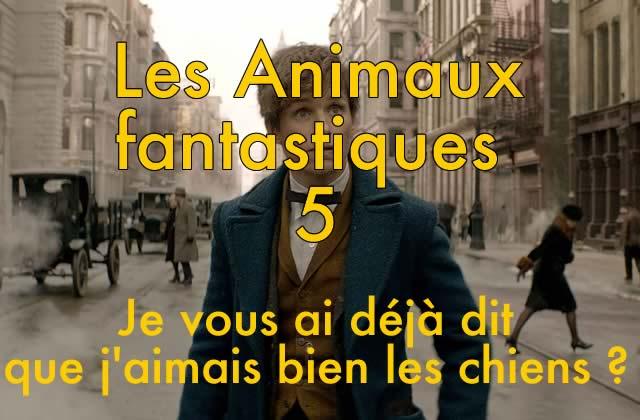 Les Animaux Fantastiques est le premier volet d'une saga de… 5films!