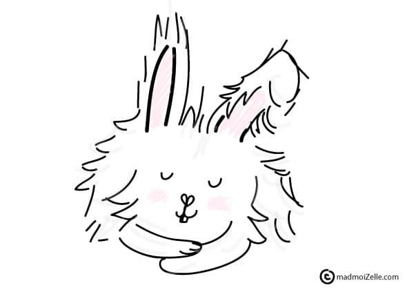 dessin-lapin-angora