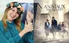 10 trucs que tu ignorais sur les Animaux Fantastiques, le spin-off d'Harry Potter
