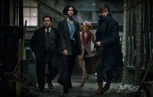 Les Animaux Fantastiques fait renaître la magie Harry Potter plus efficacement que la Pierre de Résurrection