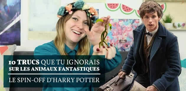 big-anecdotes-animaux-fantastiques-harry-potter-fannyfique