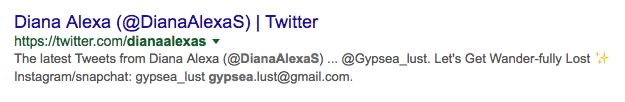 diana-alexa-screen-twitter