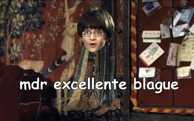 harry-potter-humoriste