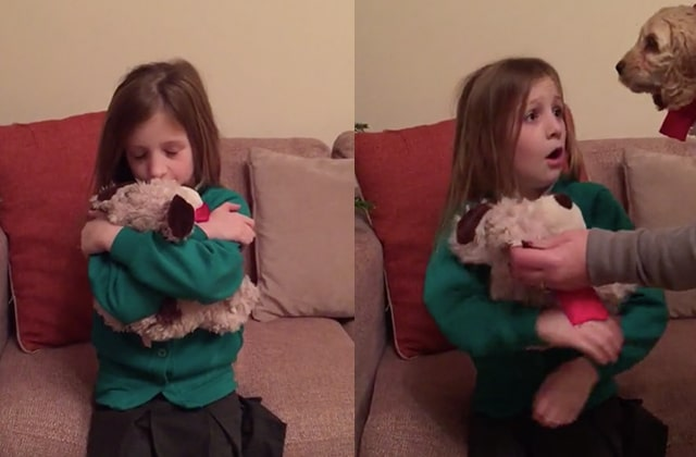 offrir un chien no l une petite fille re oit un chien. Black Bedroom Furniture Sets. Home Design Ideas