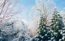 Deux contes de Noël en audio, pour un matin cosy