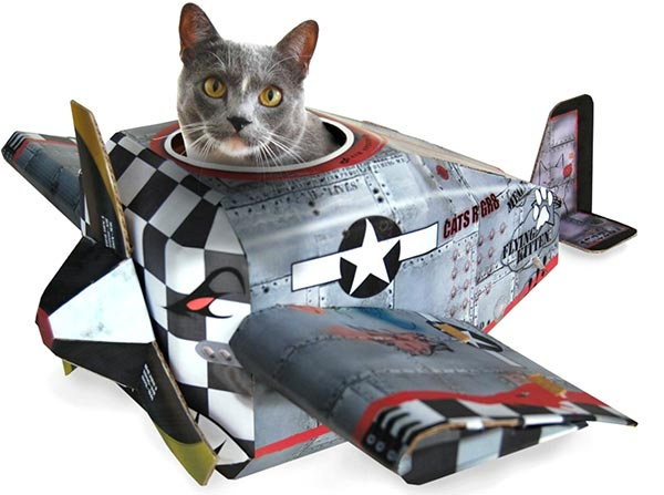 avion-carton-chat
