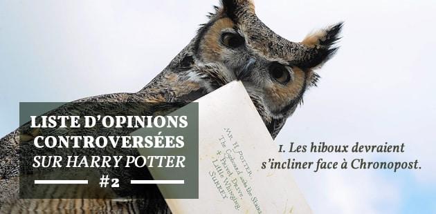 Les Moldus ont plus d'avenir que les Sorciers, et autres opinions controversées sur Harry Potter#2