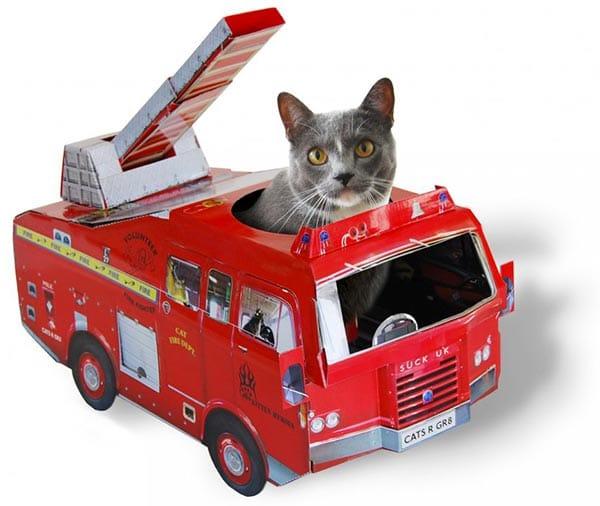camion-pompier-chat