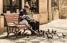 Comment sortir de la solitude, grâce aux conseils d'un adorable vieil homme