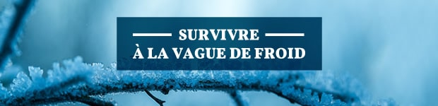 vague-de-froid-620