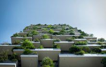 Des champignons dans les parkings, des poissons dans les bassins: Paris se met au vert