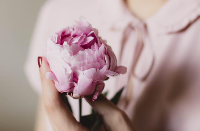 La pivoine, une jolie fleur qui apaise, incontournable du printemps 2017