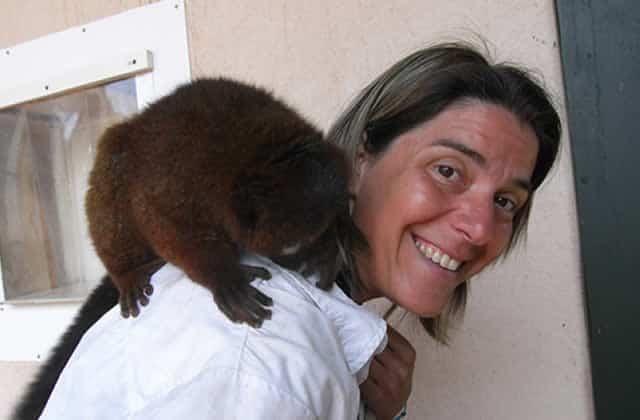 Emmanuelle Pouydebat, chercheuse en intelligence animale, nous parle de ces animaux si malins