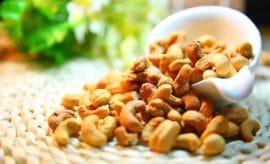 Les noix de cajou — Comment ça pousse en fait?