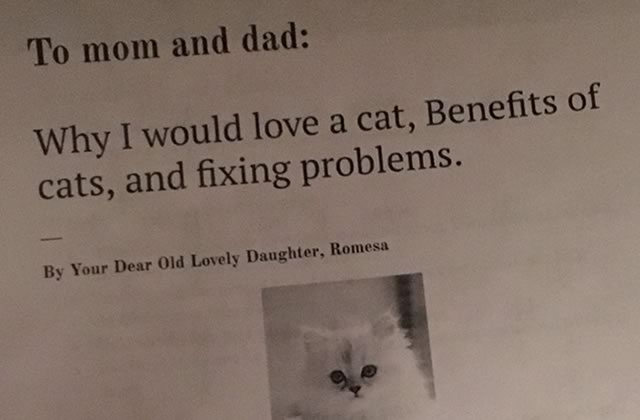 Des nouvelles de Romesa, 11ans, et de sa stratégie pour convaincre ses parents d'adopter un chat