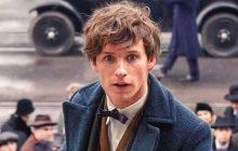 La masculinité fantastique de Newt Scamander, et autres héros pas comme les autres
