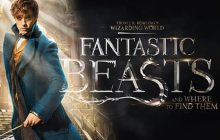 Les Animaux Fantastiques2 accueille Nicolas Flamel, sous vos applaudissements