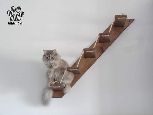 cadeaux pour chats du panier au jouet. Black Bedroom Furniture Sets. Home Design Ideas
