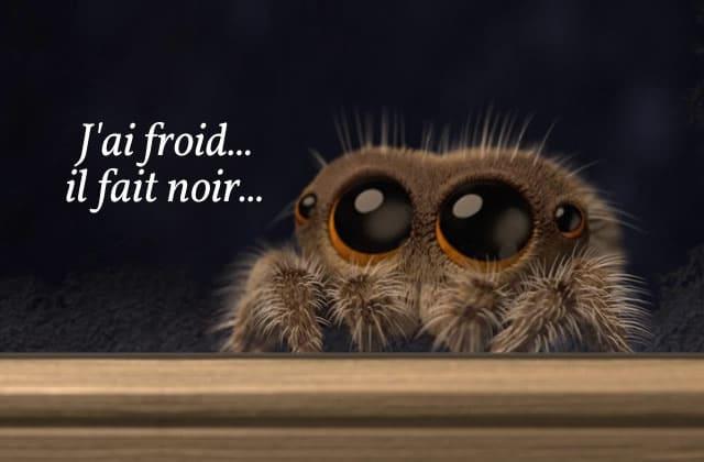 L'araignée bien trop chou est de retour, et elle voudrait rentrer chez vous