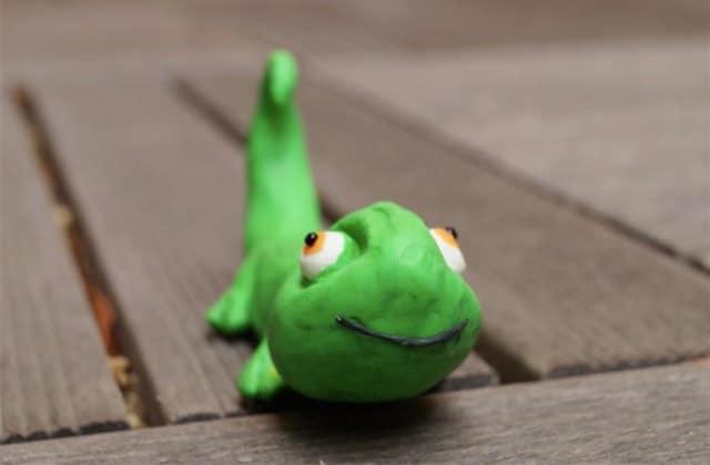 « Je suis un caméléon sourd », le plus adorable des courts-métrages en stop-motion