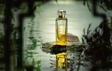 6 parfums «pour hommes» à piquer au rayon mecs