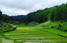 Escale en Birmanie, un pays où il est possible de voyager malgré les a priori