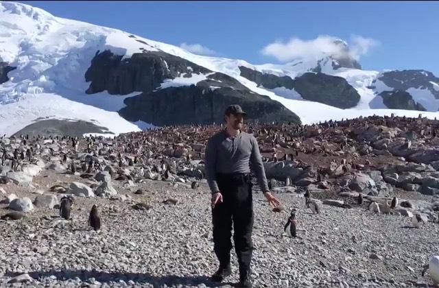 Quand David Harbour danse avec des manchots en Antarctique