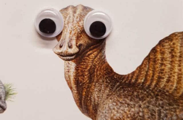 Même les dinosaures sont améliorés par une paire de googly eyes!