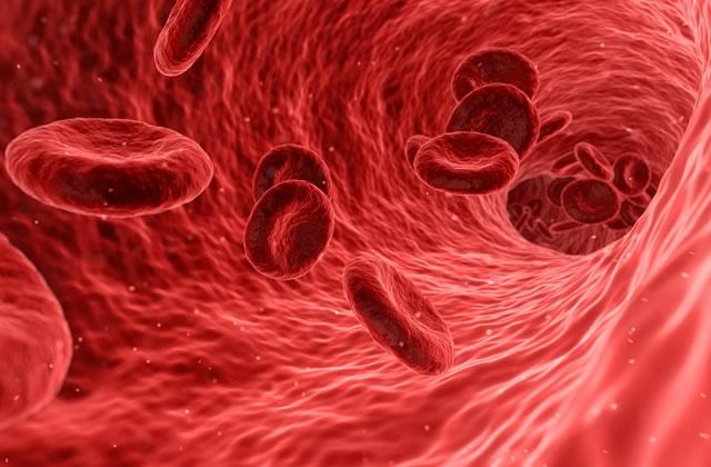 J'ai la drépanocytose, la maladie génétique la plus répandue et pourtant si mal connue