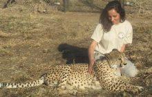 Comment je me suis installée dans un refuge d'animaux sauvages en Afrique du Sud