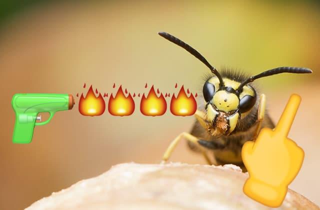 Top 5 des pires insectes qui ressortent comme des bâtards au printemps