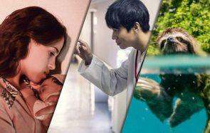 Trois films à voir cette semaine, entre documentaire animalier et drame de femme