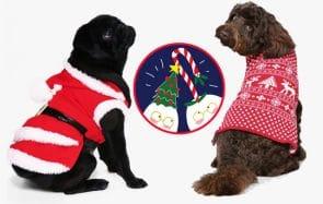 Garde ton petit chien au chaud avec ces manteaux de Noël