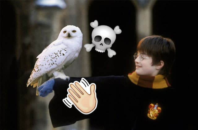 mort-hedwige-edit-harry-potter.jpg