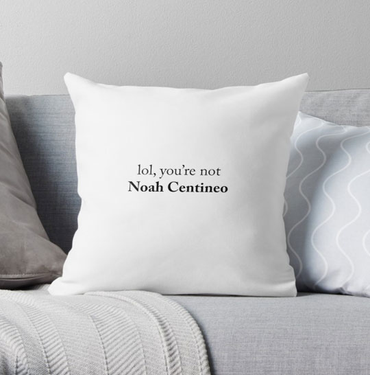 coussin noah centineo